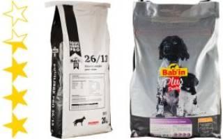 Обзор и отзывы  корма для собак Bab'in