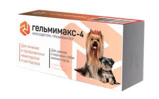 Гельмимакс для собак — инструкция, отзывы и цена
