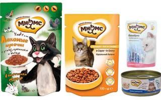 Обзор корма для кошек Мнямс