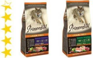Обзор и отзывы  корма для собак Primordial