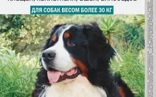 Барс для собак — инструкция по применению