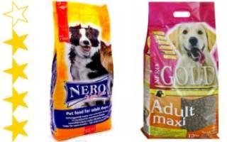 Обзор и отзывы  корма для собак Nero Gold