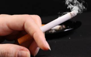 Чем опасен табачный дым для кошки?