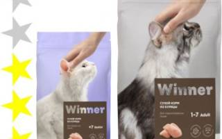 Обзор корма для кошек Winner