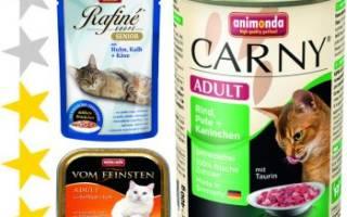 Обзор и отзывы  корма для собак Animonda