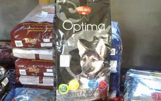Обзор и отзывы  корма для собак Optima Nova