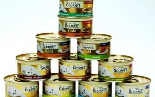 Обзор корма для кошек Gourmet