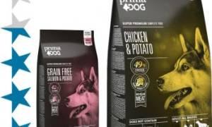 Обзор и отзывы  корма для собак Planet Pet Society