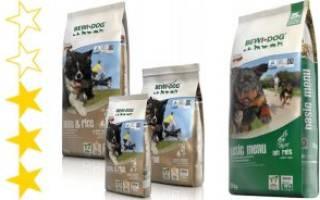 Обзор и отзывы  корма для собак Bewi Dog