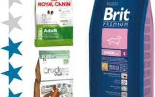 Обзор и отзывы  корма для собак Натуральная формула