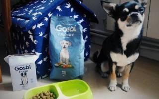 Обзор и отзывы  корма для собак Gosbi