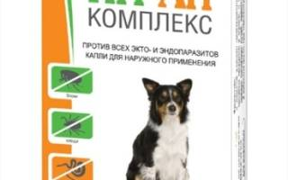 Ин-Ап комплекс для собак — инструкция, отзывы, цена