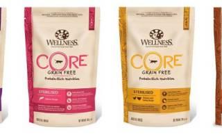 Обзор корма для кошек Wellness CORE