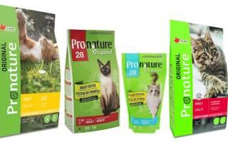 Обзор корма для кошек Pronature Original