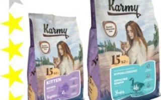 Обзор корма для кошек Karmy
