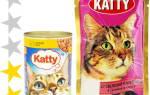 Обзор корма для кошек Katty