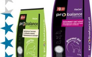 Обзор и отзывы  корма для собак ProBalance