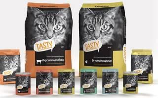 Обзор корма для кошек Tasty