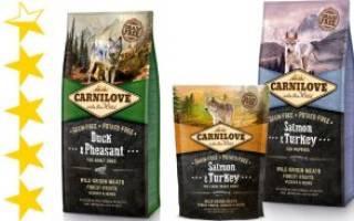 Обзор и отзывы  корма для собак Carnilove