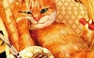 Обзор корма для кошек Пафнутий Котлетыч