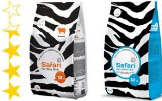 Обзор и отзывы  корма для собак Safari