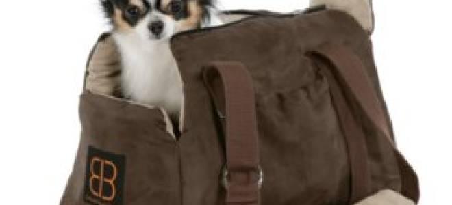 Рюкзак для переноски собак. Как выбрать?
