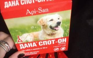 Капли Дана для собак — инструкция, отзывы, цена