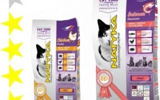 Обзор корма для кошек Natyka