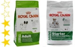 Обзор и отзывы  корма для собак Royal Canin