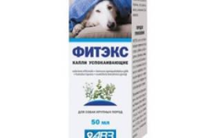 Фитэкс для собак — инструкция, отзывы, цена