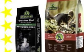 Обзор корма для кошек Holistic Blend