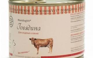 Обзор и отзывы  корма для собак MaxidogVit