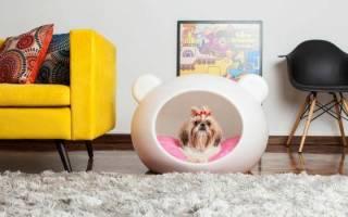 Как сделать лежанку для собаки?