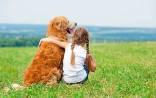 Пирантел — инструкция по применению для собак