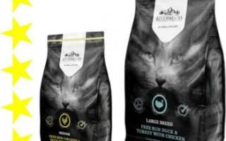 Обзор корма для кошек Riverwood