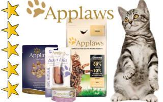 Обзор корма для кошек Applaws
